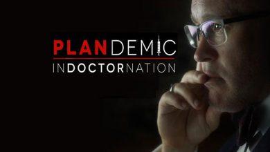 Photo de Plandemic 2