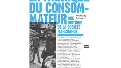 Photo de La fabrique du consommateur