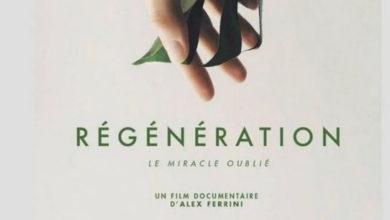 Photo de Régénération